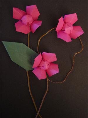 origamipage jasmin. Black Bedroom Furniture Sets. Home Design Ideas